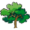 High Resolution Pohon  Icon image #3437