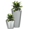 Potted Plant  Pictures image #44927