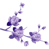 Download Purple Flower Icon image #6228