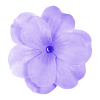 Download Purple Flower Latest Version 2018 image #6230