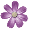 Transparent Purple Flower image #6216