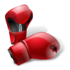 Transparent Boxing image #33000