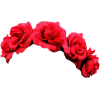 Red Flower Crown image #42589