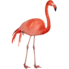 Red Long Legs Flamingo Transparent Background image #47947