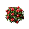 Red Rose Bush Icon image #2845
