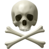 Skull And Bones Icon image #5249