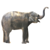 Small Animal Elephant image #43237
