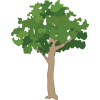 Icon  Small Tree Download image #7695