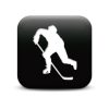 Icon Hockey image #3891