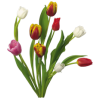 Spring Bouquets Tulips Free image #43162