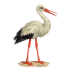 Storch Clip Art image #18377
