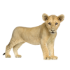 Sweet Cute Little Baby Lion image #42291
