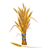 Symbol Of A Desta Wheat image #47597