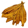 Tobacco Leaf Picture image #48052