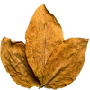 Tobacco Leaf Transparent  Image image #48039