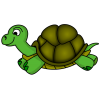 Hd Turtle Image In Our System image #22702