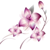 Violet Lotus Flower Transparent Background  Uffbits™ image #6213