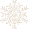 White Snowflake  Pictures image #26303