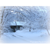 Winter House Designs thumbnail 31451