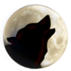 Wolf On Moon image #2851