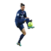 Football Gamer Zlatan Ibrahimovic image #41051