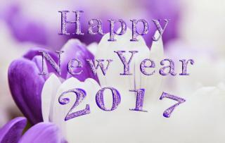 Download And Use 2017 Happy New Year Png Clipart PNG images