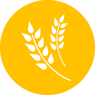 Orange Agriculture Icon Png PNG images