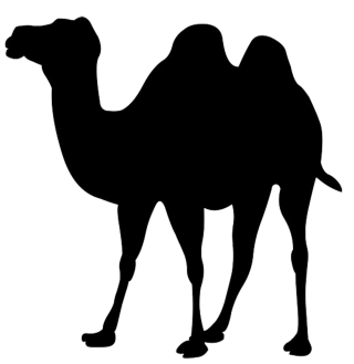 Silhouette Clip Art Of Camel PNG images