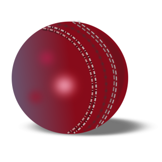 Cricket Ball Icon Png PNG images