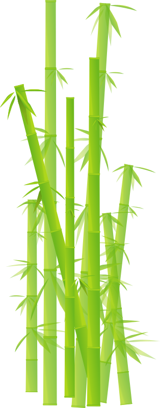 Browse And Download Bamboo Png Pictures PNG images