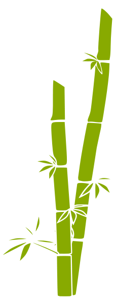 Bamboo Download Picture PNG images