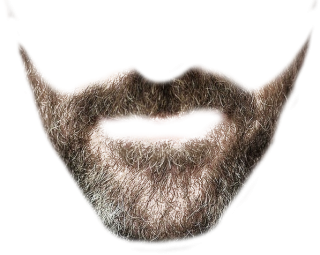 Transparent Beard Image PNG images