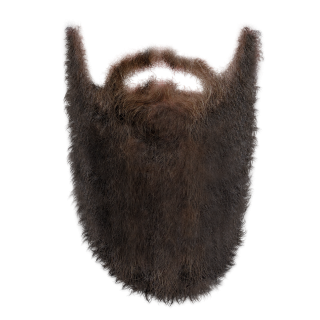 Transparent Long Beard PNG images