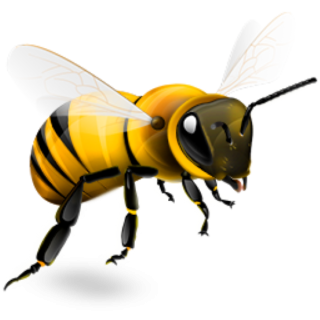 Bee Png Available In Different Size 28 PNG images