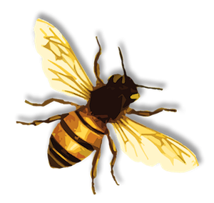 Free Clipart Pictures Bee PNG images