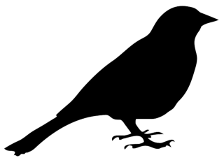 Bird Silhouette Sitting Bird Png PNG images