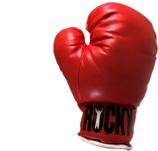 Browse And Download Boxing Png Pictures PNG images