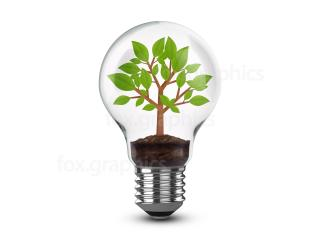 Light Bulb In Tree. Png PNG images