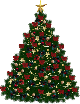Browse And Download Christmas Tree Png Pictures PNG images
