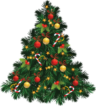 Image PNG Transparent Christmas Tree PNG images