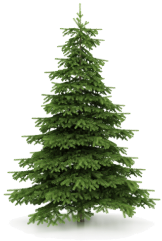 Christmas Tree Picture Download PNG images