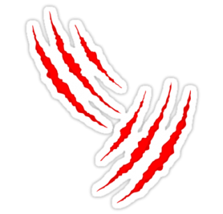 Claw Scratch Photos Picture PNG images