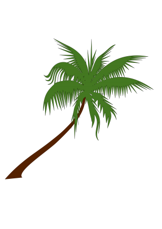 Best Free Coconut Tree Png Image PNG images