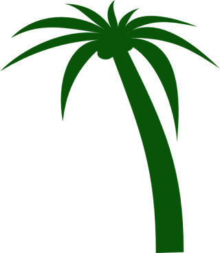 Download Coconut Tree High-quality Png PNG images