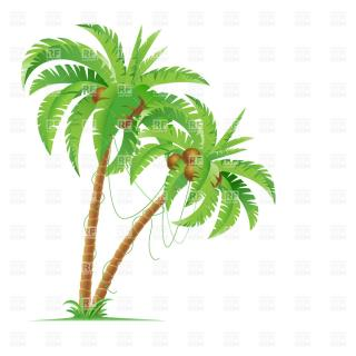 Download Coconut Tree Icon Clipart PNG images