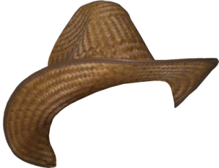 Cowboy Hat Png Cowboy Hat Transparent Background Freeiconspng If you like, you can download pictures in icon format or directly in png image format. cowboy hat png cowboy hat transparent