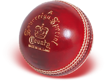 Download And Use Cricket Ball Png Clipart PNG images