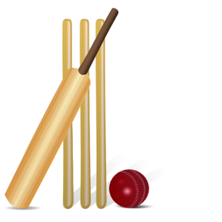 Download Png Clipart Cricket Ball PNG images