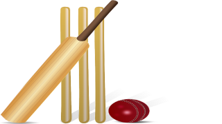 Picture Cricket Ball PNG PNG images