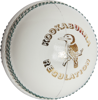 Get Cricket Ball Png Pictures PNG images